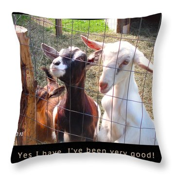 Throw Pillow featuring the photograph Goats Poster by Felipe Adan Lerma
