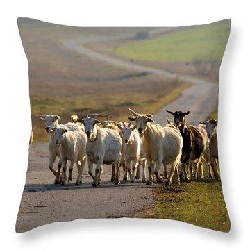 Goats Walking Home Throw Pillow