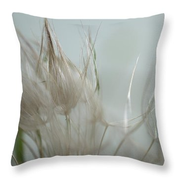 Goatsbeard Seedhead Throw Pillow