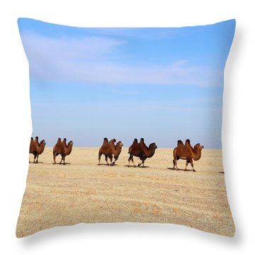 Gobi Camels Throw Pillow by Diane Height