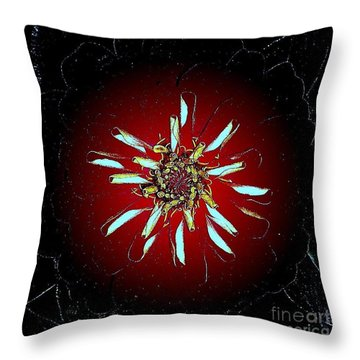 God Created Abstract Throw Pillow