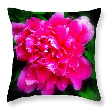 Throw Pillow featuring the photograph God The Artist by Greg Moores