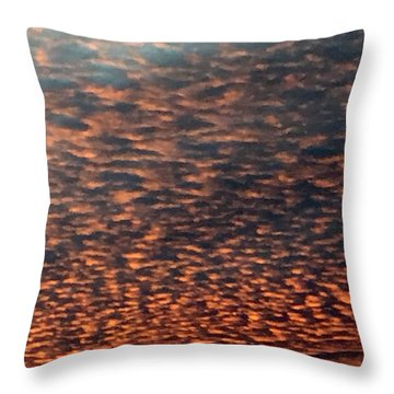 God's Covering Throw Pillow