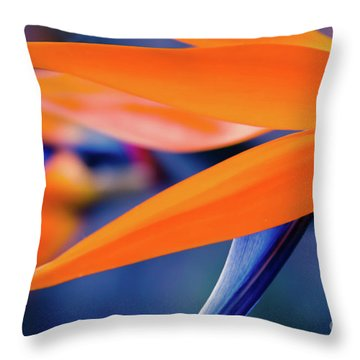 Throw Pillow featuring the photograph Gods Garden by Sharon Mau