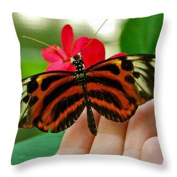 Throw Pillow featuring the photograph God's Handiwork by Debbie Karnes