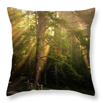 God's Light 2 Throw Pillow