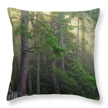 God's Light Throw Pillow