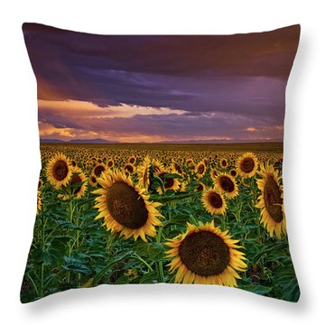 God's Painted Sky Throw Pillow