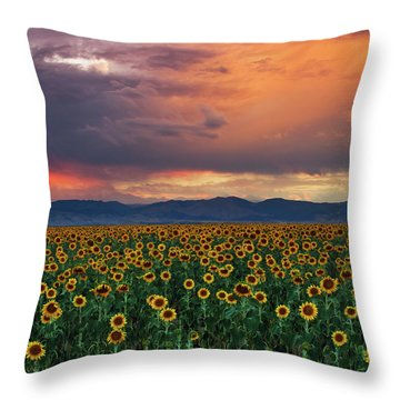 Throw Pillow featuring the photograph God's Sunflower Sky by John De Bord