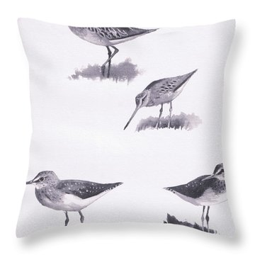 Godwits And Green Sandpipers Throw Pillow by Archibald Thorburn