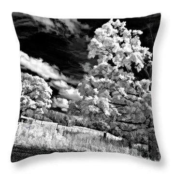 Goin' Down The Road Buzzed Throw Pillow by Steve Harrington