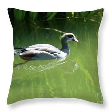 Going For A Swim Throw Pillow by Methune Hively