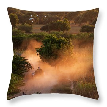 Throw Pillow featuring the photograph Going Home At Sunset by Pradeep Raja Prints