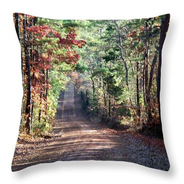 Throw Pillow featuring the photograph Going Home by Betty Northcutt
