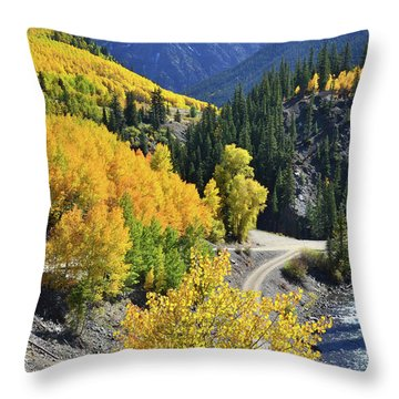 Going Off Road Throw Pillow