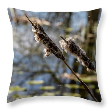 Throw Pillow featuring the photograph Going To Seed by Odd Jeppesen