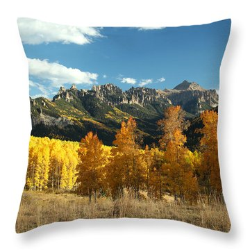 Gold At Their Feet Throw Pillow