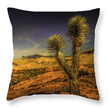 Throw Pillow featuring the photograph Gold Butte From The Joshua by Janis Knight