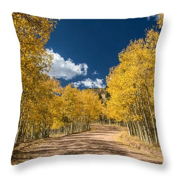Gold Camp Road Throw Pillow