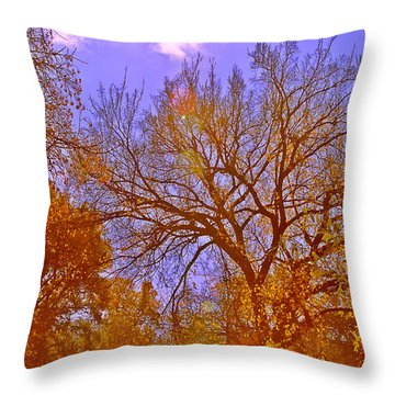 Gold Day Throw Pillow by Kat Besthorn