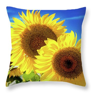 Gold Throw Pillow by Greg Fortier