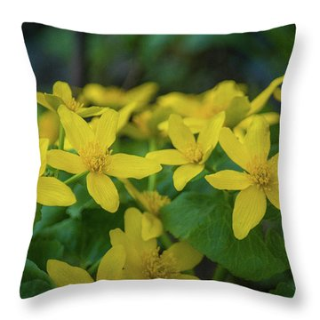 Throw Pillow featuring the photograph Gold In The Marsh by Bill Pevlor