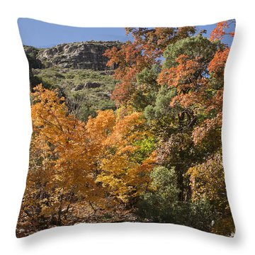 Throw Pillow featuring the photograph Gold In The Mountains by Melany Sarafis