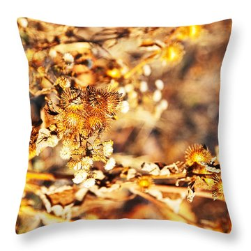 Gold Rush Throw Pillow