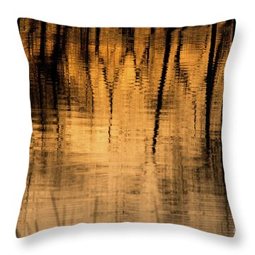 Golden Abstract Throw Pillow by Shevin Childers