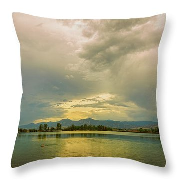 Throw Pillow featuring the photograph Golden Afternoon by James BO Insogna