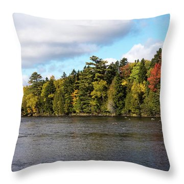 Golden Autum Day Throw Pillow