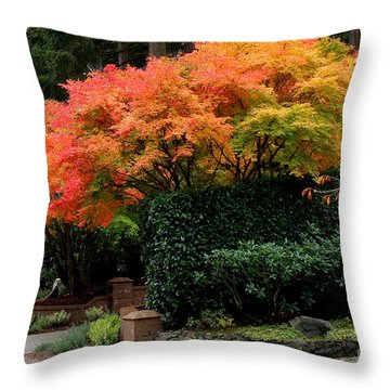 Throw Pillow featuring the photograph Golden Autumn  3 by Tanya  Searcy