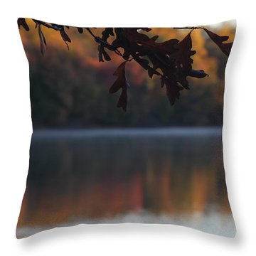 Throw Pillow featuring the photograph Golden Autumn by Vadim Levin