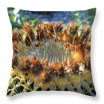 Throw Pillow featuring the photograph Golden Barrel Cactus by Glenn McCarthy Art and Photography