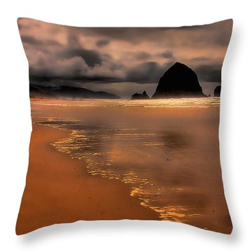 Golden Beach Throw Pillow by David Patterson
