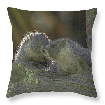 Golden Bellied Marmot Throw Pillow