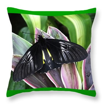 Golden Birdwing Throw Pillow by Judy Wanamaker