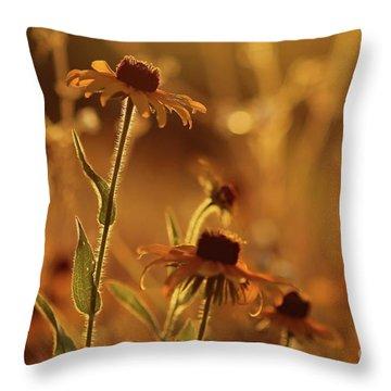 Golden Black Eyed Susan Throw Pillow