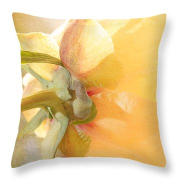 Golden Bowl Tree Peony Bloom - Back Throw Pillow