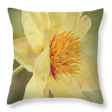 Golden Bowl Tree Peony Bloom - Profile Throw Pillow