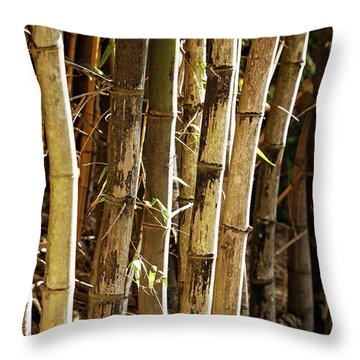 Throw Pillow featuring the photograph Golden Canes by Linda Lees