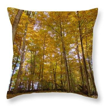 Golden Canopy Throw Pillow