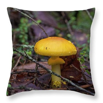 Golden Cap Throw Pillow
