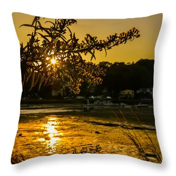 Golden Centerport Throw Pillow