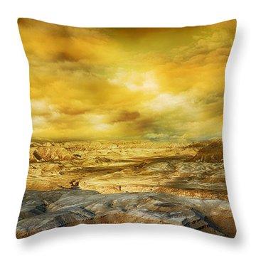 Golden Colors Of Desert Throw Pillow