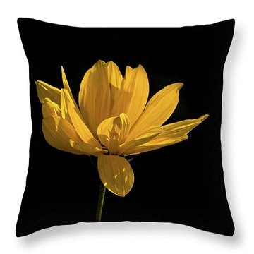 Golden Coreopsis Throw Pillow