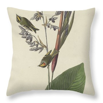 Golden-crested Wren Throw Pillow