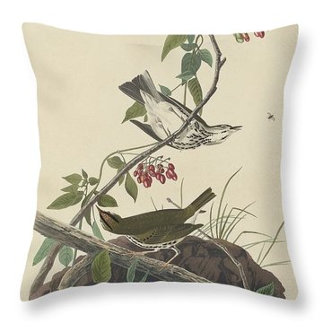 Golden-crowned Thrush Throw Pillow