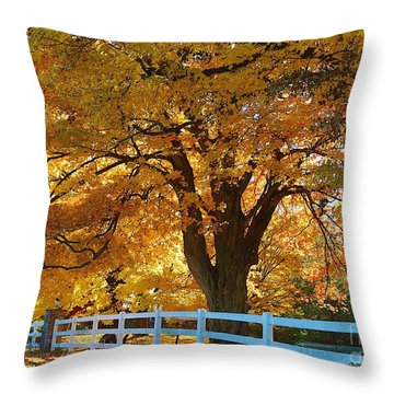 Throw Pillow featuring the photograph Golden Curtain by Robert Pearson