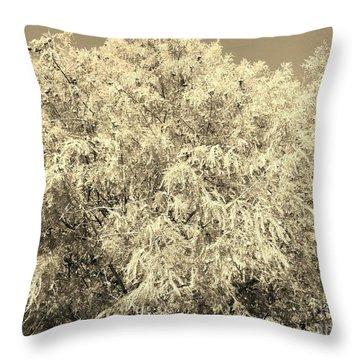 Golden Cypress - Sepia Throw Pillow
